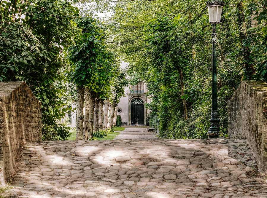 puente-arboles-puerta-brujas-tour-local