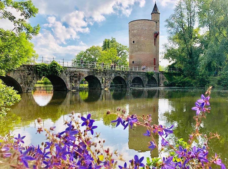 Brujas, Molinos y Puertas Medievales - Tour Local